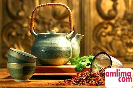 Чай мате: користь і шкода цього чудового напою