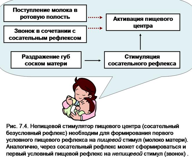 Про сосательном рефлексі: слабкий або відсутність рефлексу ссання