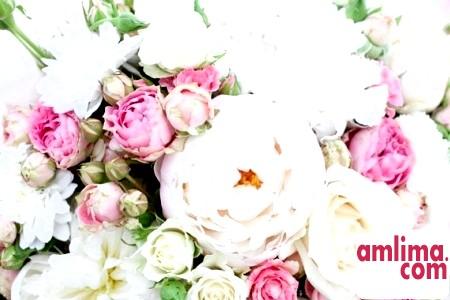 ТОП-7 найромантичніших квітів для дівчини