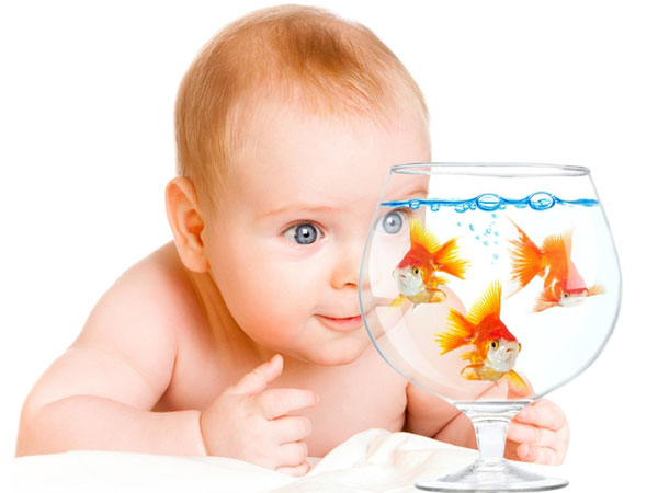 Фото - дитині 6 місяців